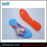 Anti-Slip Summer Simple Jelly Beach Thong Flip Flops Slippers for Womens Ladies with PVC Sole