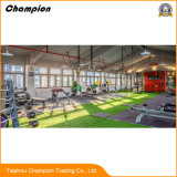 Indoor Gyms Carpet Artificial Mat Grass/ Fitness Facilities Synthetic Turf, Gym Used Indoor Artificial Grass Mat/Artificial Grass Prices