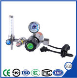 Exproting Electric Heated CO2 Pressure Reducer Regulator with Fiowmeter