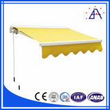 Professional Manufacturer Aluminum Awning and Louver- (BZ-047)