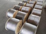 Steel Wire Rope (galvanized)