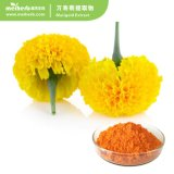Natural Plant Botanical Marigold Extracts Herbal Marigold Flower Extract