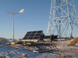 Qingdao Ane Honor Designed Wind Solar Hybrid Supply System for Mobile Base Station
