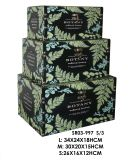 Decorative Natural Wood Storage Box, Gift Box, Jewelry Box Organizer