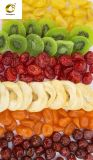 All Kinds of Healthy Dried Fruit of High Quality