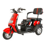 GM2.5 China′ S Cheap 48V500W Electric Tricycle CE Certified Electric Tricycle