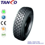 Radial Tyre for Bus and Trucks