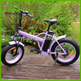 24/26 Inch Folding Electric Poket Bike a-Bike Made in China