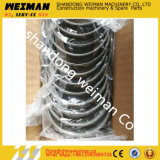 Upper Bearing Shell 4110000970004 Use on Wheel Loader