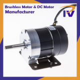 Permanent Magnet IP 54 Brushless or Brush DC BLDC Motor for Pump Driver