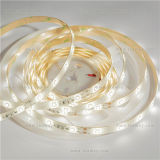 Professional Lighting Strip SMD2835 Constant Current White Light LED