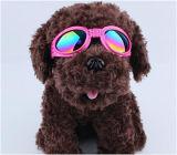 Pet Glasses, Pet Goggles, Pet Eyewear