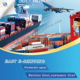 Shipping Agent Ocean Freight Forwarder Shipping to America Port