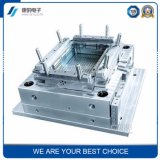 Plastic Injection Molding Products Design Manufacturer Plastic Injection Mold Plastic Mould