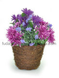 Natural Round Salim Rattan Basket Flower Pot