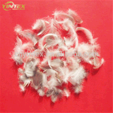 Standard High Quality Washed Goose Down Feather