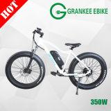 350W Electric Bike 2018 Dirt Bike 36V Mountain E-Bicycle