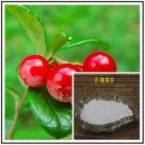 High Purity Natural Powder Beta Arbutin 497-76-7
