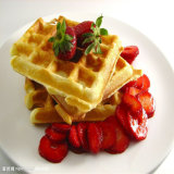 Best Price Bakery Equipment Stainless Steel Waffle Maker with Ce