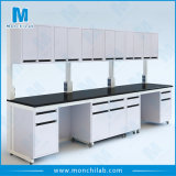 Microbiology Lab Furniture C Frame Bench with Wall Cabinet