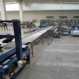 Custom Made Gravity Roller Conveyors for Carton Package