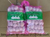 2017 New Crop Garlic Fresh Garlic Price From Jinxiang