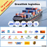 Sea Freight Logistics From China to Haiti
