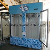 Ice Storage Freezer for 65 Cu FT Ice Storing