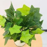 5 Tongs of Film Ground Melon Leaves Artificial Plant, Beautiful Design, Cheap and Fine.