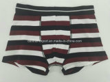 Yarn Dye Black White Brown Strip Children Underwear Boy Boxer Short Boy Brief