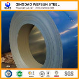 Color Coated Steel Coil/Plate