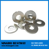 Huge NdFeB Ring Magnet