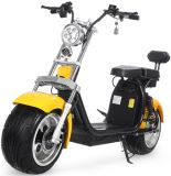 Harley Electric Two Dual Batteries Take off Charging Harley Motorcycle with EEC Approved