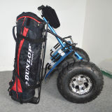 Cheap Sport Golf Carts 2 Wheels Golf Scooter with Double Batteries
