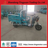 China New 48V/60V Electric Tricycle for Sale