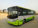 Battery Operated Bus with Cheap Price
