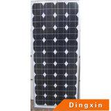 Transparent Mono Solar Panel (DXM-95W)
