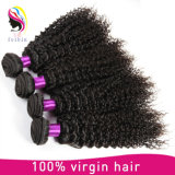 Factory Price Mongolian Human Hair Kinky Curly Extension