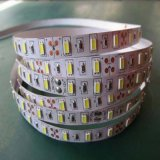 5630 60LED/Meter Bicolor LED Strip From Shenzhen for Wholesale