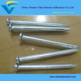 Steel Concrete Nails with Fluted Shank and Good Price