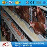 China Supplier 3 Layers Electro Galvanized Broiler Chicken Cage with Great Price