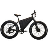All Terrain High Speed Long Distance Electric Bike with Double Motors
