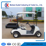 Hot Sale 2 Seater Lifted Hunting Tyre Electric Golf Cart