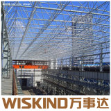 H-Section Light Steel Structure Construction with Q235 and Q345 Material
