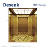 Desenk China Factory Passenger Lift 1000kg Indoor Residential Passenger Elevator Goods Home Lift with Best Price and Good Quality