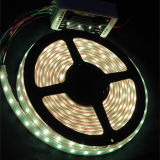 Wholesale Waterproof White SMD LED Flexible Strip Rope Light for Outdoor