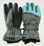 Custom Wholesale Snow Winter Bike Glove Ski Glove (HY17110910)