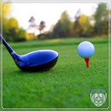 High Density Artificial Synthetic Golf Putting Green Grass