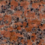 Factory Supply Polished Maple-Leaf Red Granite