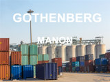 Reliable Sea Freight Service From Guangzhou to Gothenberg